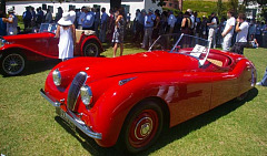 Special hospitality packages at Concours South Africa