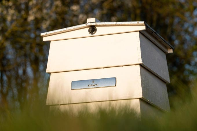 Rolls-Royce apiary project observes World Bee Day