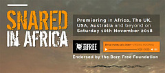 Radio stations unite around the world for synchronised broadcast of SNARED IN AFRICA - Saturday 10th November 2018